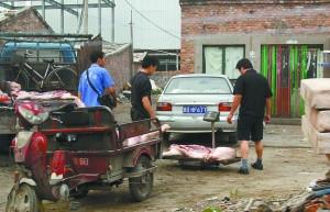 北京泔水猪肉未经检疫流入市场 当正规肉卖(图)