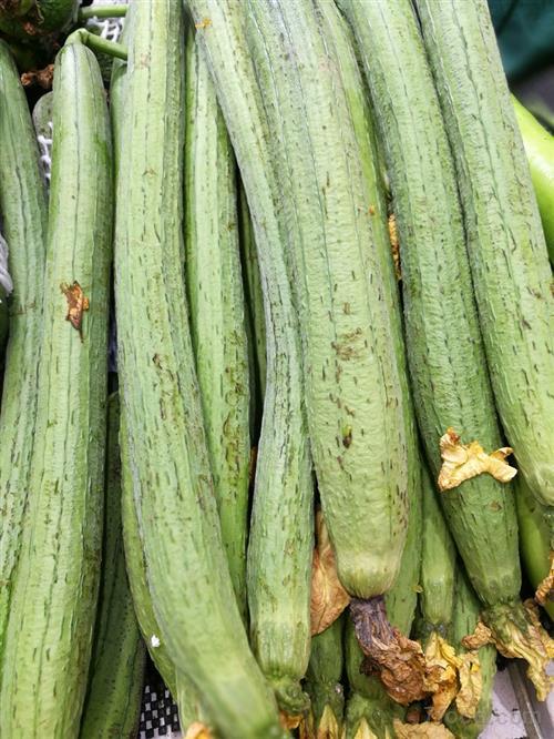 丝瓜利尿清热 夏季食用好处多