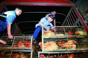内地将对食品从业人员集训行业道德伦理